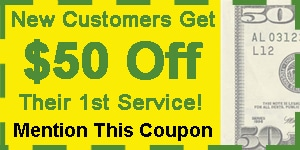50-Dollars-Off-Pest-Control-Medford
