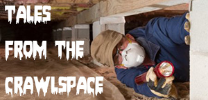 Tales from the Crawlspace